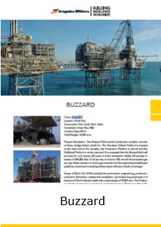Fact Sheet Buzzard
